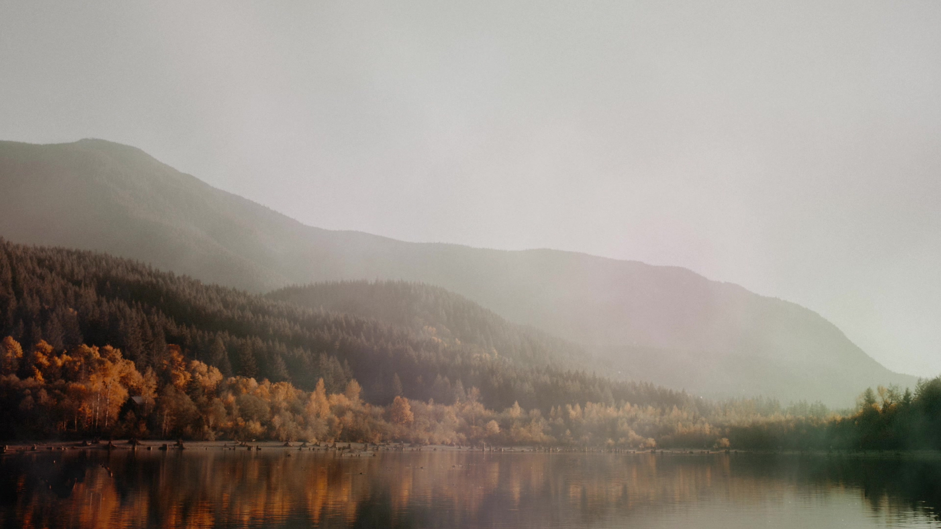 deep-autumn-lakeside-still-hd.jpg